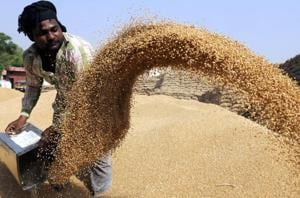 The Centre wants wheat-producing states to build silos as the shelf life of wheat in them is at least three years, whereas covered godowns and covered area plinths (in open spaces) can keep the grain safe for one to two years.