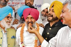 PPCC chief Sunil Jakhar offers a laddoo to winning Congress candidate Hardev Singh Ladi in Jalandhar as local bodies minister Navjot Singh Sidhu and party MLA Rana Gurjit Singh look on.