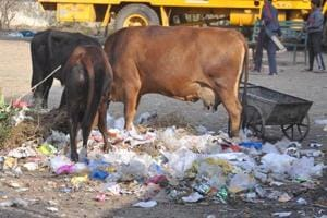 Dehradun produces 327.9 tonnes of plastic waste per day, according to the survey.