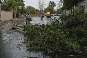 Over the last two days, thunderstorm with light rains have occurred at isolated areas in Rajasthan.