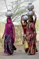The Niti Aayog report says only 44 per cent of Rajathan's rural habitations are 'fully covered' by drinking water supply.
