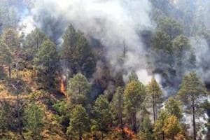 Although the official forest fire season is over, sporadic incidents of fire are still being recorded from different parts of the state. Officials say there hasn't been enough rainfall this year.