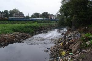 The Kalyan creek has turned into a nullah because of the continuous discharge of untreated effluents.