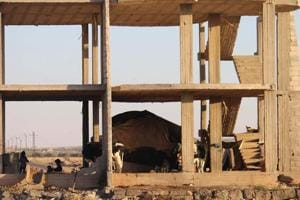 A Syrian family takes shelter under an empty building with their tent and cows in Daraa, southwestern Syria, after several days of intensified bombardment by Syrian regime forces on June 23, 2018.