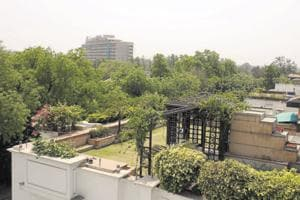 Central Delhi's Sundar Nagar, that had a lush canopy of trees that shaded the drive, has already lost a major portion of its green cover.