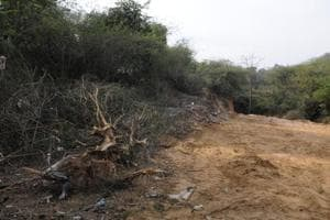 The land, as per official records, is marked as uncultivable waste land, and falls under the jurisdiction of the panchayat. As such, it cannot be sold. The municipal corporation of Gurugram (MCG) staked a claim on the land in 2015 and asked its occupant to vacate it.