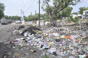 """""""The system of waste collection and disposal has collapsed and Lucknow may be hit by diseases in the rainy season as a good percentage of filth is being dumped in the city itself."""""""
