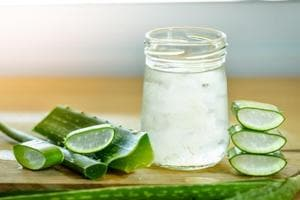 Side effects of aloe vera: The juice and latex derived from Aloe vera can help with diabetes, skin problems and weight loss.