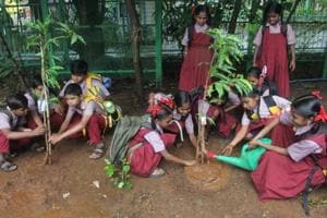 Students of Smt Sulochana Devi Singhania school plant trees in the school premises along with the students of Pandit School, a tribal school in Yeoor.