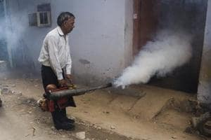 Fumigation on to prevent the spread of mosquitoes.