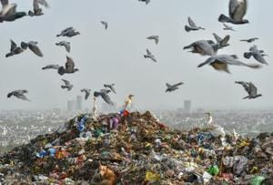 India generates over 150,000 tonnes of municipal solid waste (MSW) per day. According to the World Bank, India's daily waste generation will reach 377,000 tonnes by 2025.