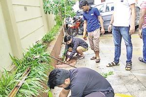 Members of VTP Urban soul society, Kharadi, planted 30 saplings.