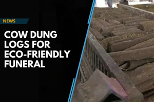 Raipur makes cow dung logs for eco-friendly funeral