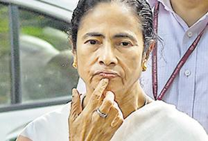 West Bengal chief minister Mamata Banerjee has been the Centre's fiercest critic over the updated Assam citizen list.