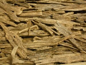 HT had reported that 525 kg of agarwood was seized in the state in seven months