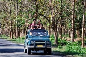 Tourists enjoy jungle safari at Corbett Tiger Reserve in Ramnagar.