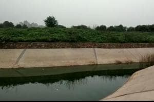 The abandoned pool where bodies of two minors were found near a village in Dadri, Uttar Pradesh.