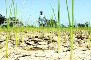 The Marathwada region has been facing drought.