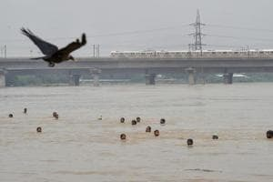 People swim across the swollen Yamuna river, in New Delhi on Sunday, July 29, 2018.