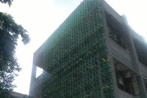 A vertical garden at a North Corporation's primary school at Miradard Road.