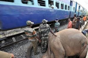 A tusker died after being hit by Nanda Devi Express on February and another died in March this year in the state.
