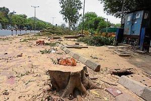 Delhi high court refused to give permission to resume construction at south Delhi's Nauroji Nagar.