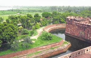 An overview of green cover on the Yamuna bank near the Agra Fort.
