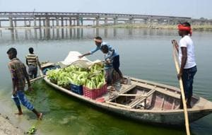 A farmer's family ferrying vegetables across the Ganga on boats after harvesting them from their field on the banks of the river in Phaphamau.