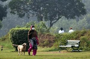 A woman takes her pet dog for a early morning walk in a park in  New Delhi.