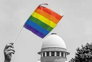 An activist waves a rainbow flag after the Supreme Court verdict which decriminalises consensual gay sex, outside the Supreme Court in New Delhi.