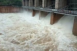 Water released from Panchna dam in Karauli on Thursday.