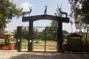Entry gate of Deer park in district Hisar.  A carcass of a black buck was found in the park and is suspected to have been killed by an animal belonging to the cat family.