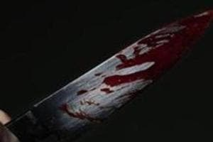 The 45-year-old insurance consultant was stabbed to death in a public park near his home in west Delhi's Tilak Nagar.