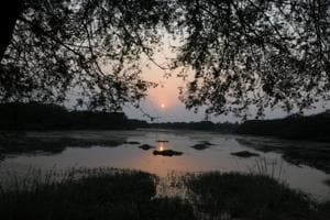 The Sultanpur National Park is a hot spot for birdwatchers in the National Capital Region, but in recent years it has come under pressure from urban expansion, causing degradation of the local ecology.