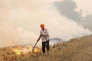 A farmer setting his field on fire after harvesting the paddy crop at Kauli village in Patiala district.