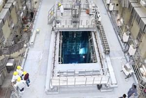 Apsara U is a swimming pool type research reactor that uses plate type dispersion fuel elements made of low enriched uranium.