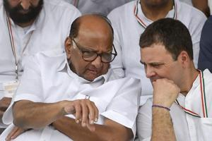Congress President Rahul Gandhi (R) and NCP Chief Sharad Pawar during
