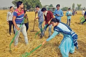 NGO volunteers accompanied by then SDM and now additional deputy commissioner, Sakshi Sawhney, clearing paddy stubble at a village in Bathinda last year.
