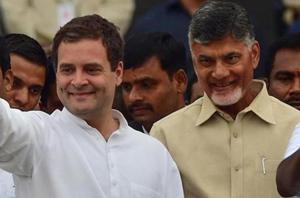 Congress president Rahul Gandhi and Andra Pradesh chief minister Chandrababu Naidu.