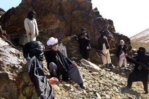 India's Permanent Representative to the UN, Ambassador Syed Akbaruddin, said 60% of the Taliban's revenues are from drug trade, and poppy cultivation is said to be the largest cash crop in Taliban-controlled areas.