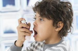The period between the age of eight and puberty is particularly important for lung health and determining asthma risk later in life.
