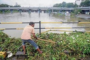 A Pune municipal corporation worker cleans the hyacinth and waste from Mutha river.
