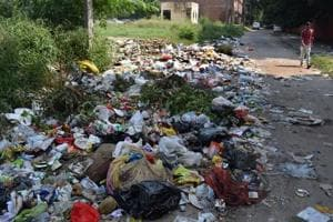 Garbage strewn along the road near the main market in Sector 33, Chandigarh.