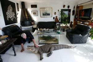Photos: Frenchman shares home with 400 scaly, scary reptiles
