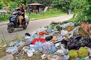 Garbage strewn on the roadside in Sector 40 in Chandigarh.