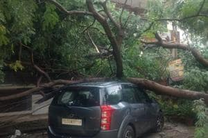 A large tree fell on a car at DLF phase1, E Block on Sunday night after heavy rain that damaged several electric poles and disrupted power supply, in Gurugram, India, on Monday, September 24, 2018.