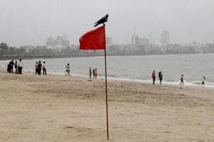 High energy swell waves to be experienced along west, Tamil Nadu coasts
