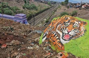 Heaps of garbage that once covered the area near Parsik tunnel have now been cleared and a tiger has been painted on a rock.