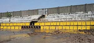 The Cidco has allowed tidal water ingress to the Panje wetlands in Uran, Navi Mumbai, by opening 10 of the 76 outlets that had been blocked.