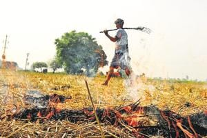 A farmer burning paddy stubble at Fatepur village in Patiala on Friday, October 5, 2018. Stubble burning by farmers in Punjab and Haryana is one of the reasons that pollution levels in Delhi shoot up during winter.